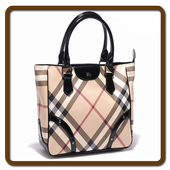 Women Handbags icon