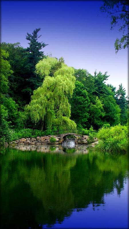 Zen Garden Live Wallpaper For Android Apk Download