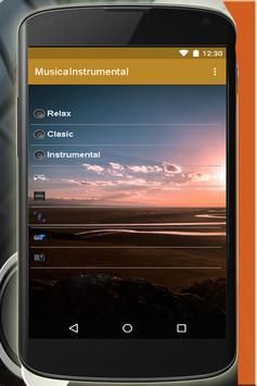 Instrumental music apk screenshot