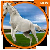 3D HD Live Horse Wallpaper icon
