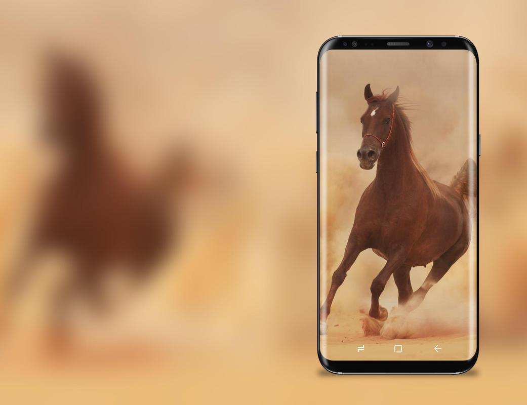 3d Hd Live Horse Wallpaper For Android Apk Download