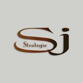 SJ Stratégie icon