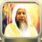 Quran Audio Muhammad Ayyub icon
