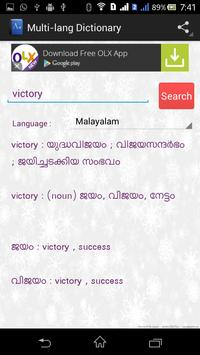 Multi-language Dictionary screenshot 3