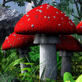 mushroom garden live wallpaper icon