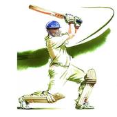 Cricket 2017 icon
