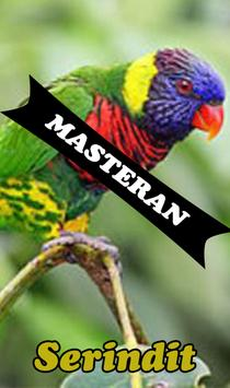 Burung Serindit Master poster