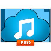 Music paradise pro downloader icon