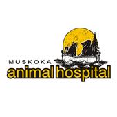 Muskoka Animal Hospital icon