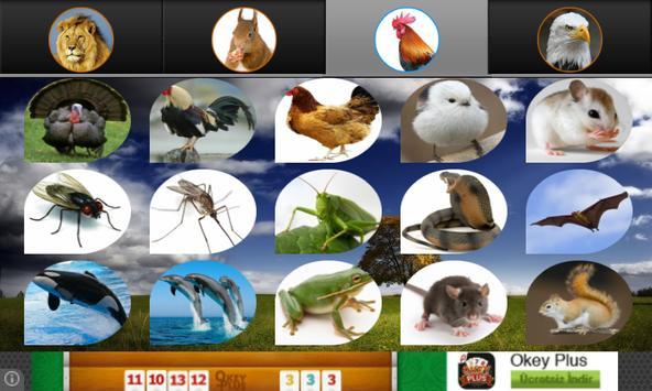 Hayvan Sesleri screenshot 2