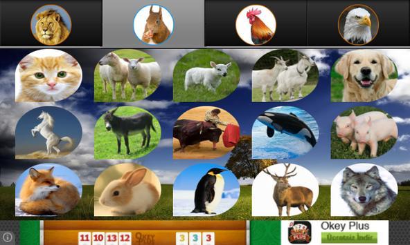 Hayvan Sesleri screenshot 3