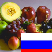 Learn Fruits in Russian icon