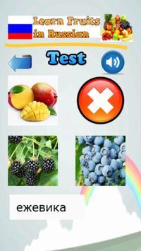 Learn Fruits in Russian apk screenshot