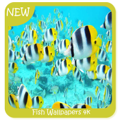 Fish Wallpapers 4k icon