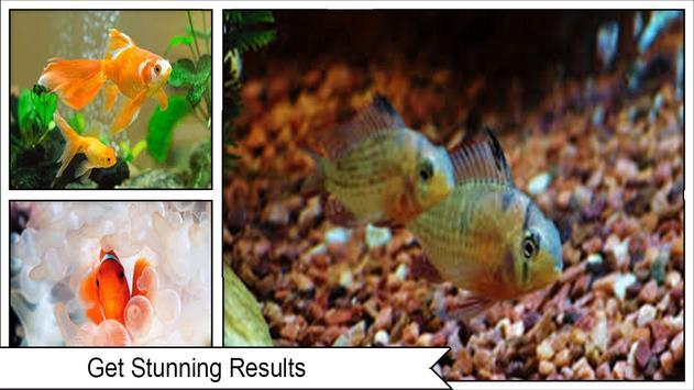 HD Aquarium  Wallpaper 3D screenshot 1