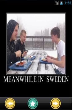 Funny Sweden Photos poster