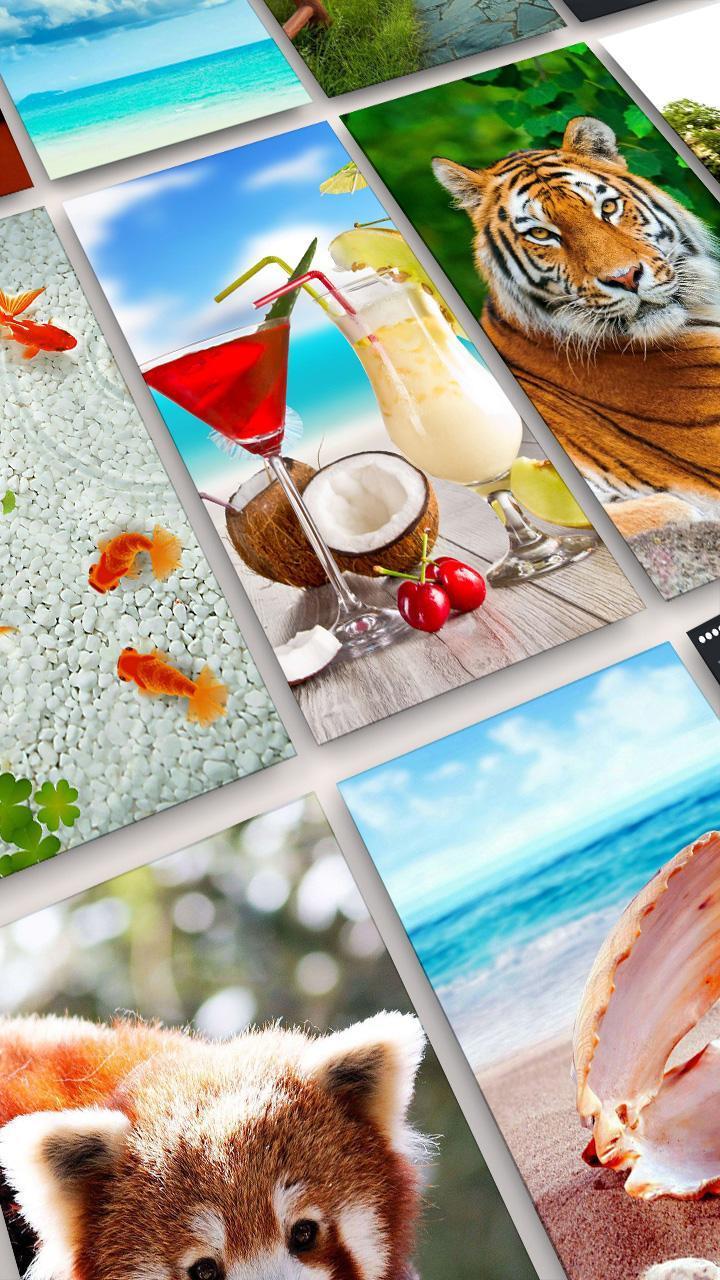 Unduh 600 Wallpaper Bagus Latar Belakang HD Terbaik