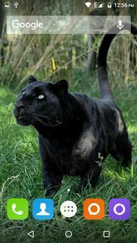 Black Panther Hd Wallpaper screenshot 11