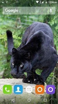 Black Panther Hd Wallpaper screenshot 5