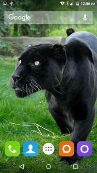 Black Panther Hd Wallpaper screenshot 7