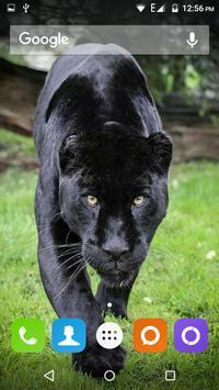 Black Panther Hd Wallpaper screenshot 9