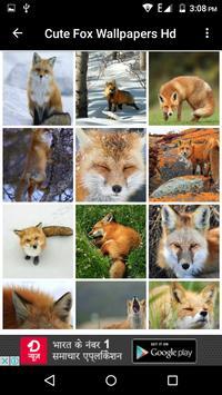 Cute Fox Wallpapers HD screenshot 2