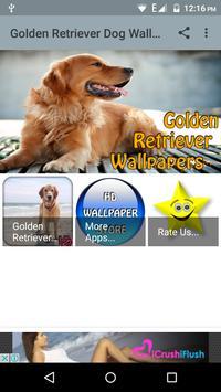 Golden Retriever Dog Wallpaper poster