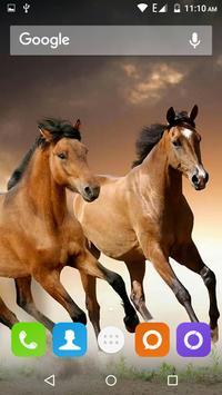 Horse Hd Wallpaper screenshot 11