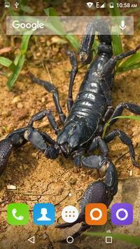 Scorpion HD Wallpaper screenshot 7
