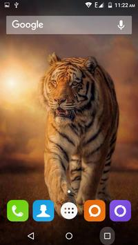 Tiger Hd Wallpapers apk screenshot