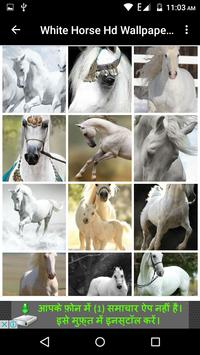 White Horse Hd Wallpapers screenshot 2