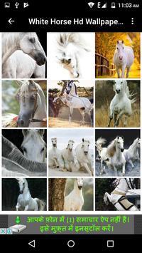 White Horse Hd Wallpapers screenshot 6