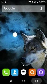 Wolf Hd Wallpaper apk screenshot