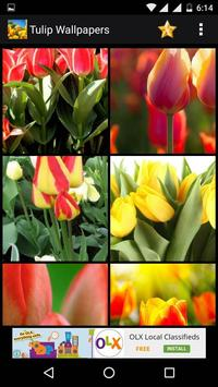 Tulips Flowers HD Wallpapers screenshot 15