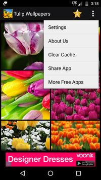 Tulips Flowers HD Wallpapers screenshot 3