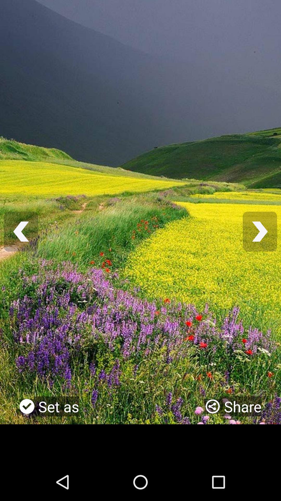 Scenery Wallpaper Full Hd Für Android Apk Herunterladen