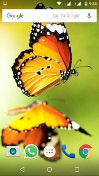 Butterfly Wallpapers HD screenshot 1