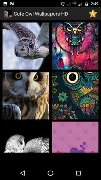 Cute Owl Wallpaper Screenshot 8