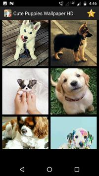 Cute Puppy Wallpaper Screenshot 5