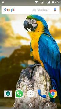 Macaw Parrot Bird HD Wallpaper screenshot 3