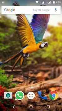 Macaw Parrot Bird HD Wallpaper screenshot 7