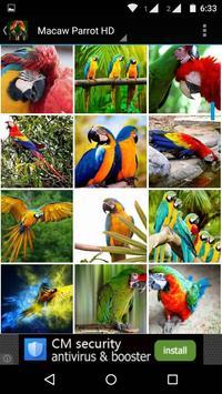 Macaw Parrot Bird HD Wallpaper screenshot 4