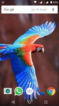 Macaw Parrot Bird HD Wallpaper screenshot 5
