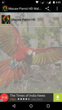 Macaw Parrot Bird HD Wallpaper screenshot 8