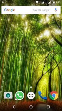 Plant HD Wallpaper apk screenshot