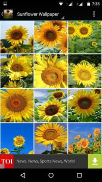 Sunflower Wallpaper HD screenshot 4