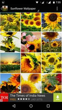 Sunflower Wallpaper HD screenshot 14