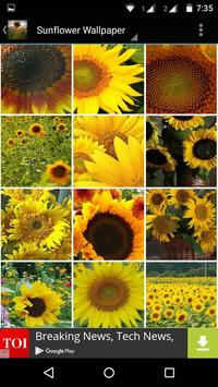 Sunflower Wallpaper HD screenshot 2