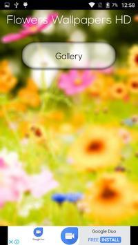 Flowers Wallpapers HD screenshot 1