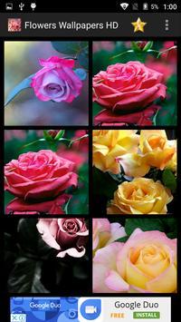 Flowers Wallpapers HD screenshot 9